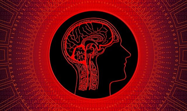 Your brain is not a computer