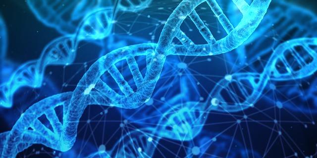 Neuroscience, epigenetics, and the new social biology