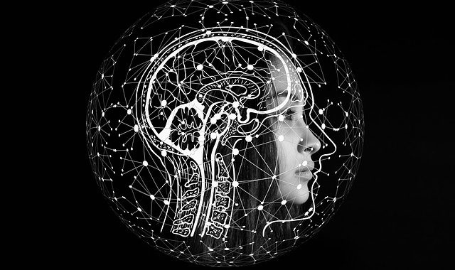 Brain biology inspires new AI
