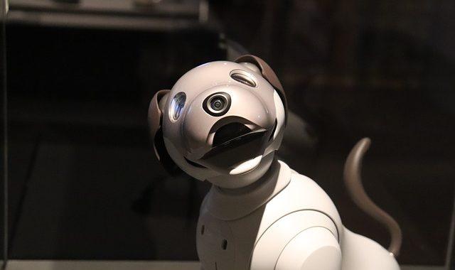 Boston Dynamics' Spot raises issues on the future of robotic law enforcement