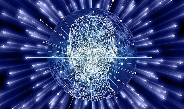 The quest for consciousness